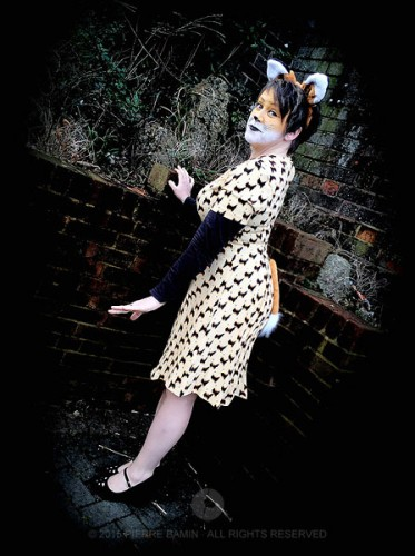 The Fantabulous Mrs Fox