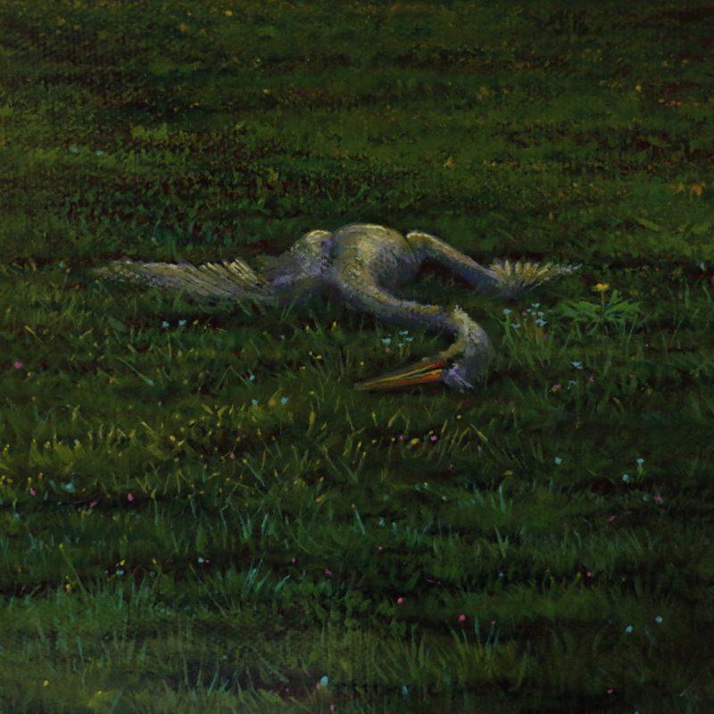 Details of The Egret